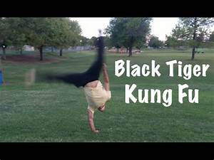Black Tiger Kung Fu KATA - Most Powerful Martial Art in ...