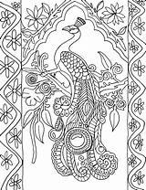 Peacock Coloring Portrait Pages Colouring Peacocks Adult Printable Adults Advanced Simple Pattern Animals Patterns Detailed Printables Books Paisley Colored Different sketch template