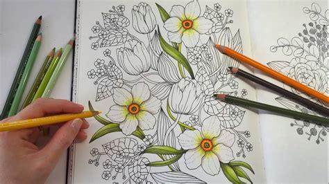 color daffodil blomstermandala coloring book