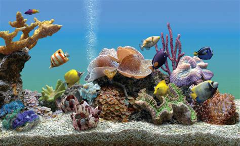 un aquarium virtuel comme 233 cran de veille francoischarron