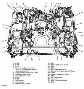 2001 Grand Marquis Engine Diagram