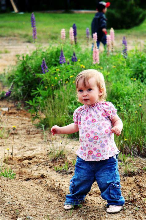 baby girl walking  stock image image  nature