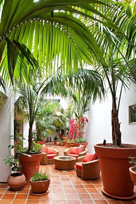 patio color ideas garden outline