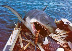 Jaws Great White Shark Classic Movie 1975 8x10 Photo Print ...