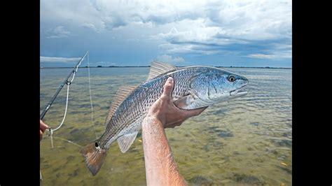 florida fishing fly