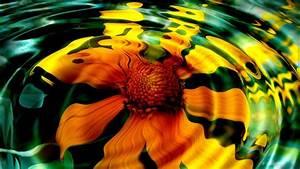 Imagen de girasoles 3D 1920x1080 :: Fondos de pantalla y wallpapers