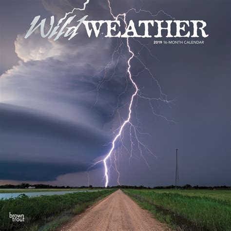 wild weather      monthly square wall