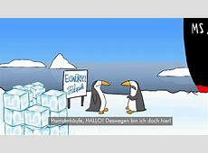 Lustige Pinguine Hamsterkäufe YouTube