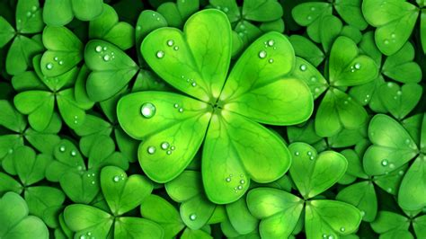 lucky charm wallpapers wallpaper cave