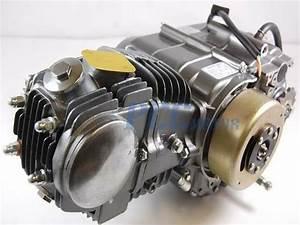 18 New 110cc Quad Wiring Diagram