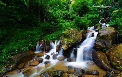 Forest Sri Lanka Sinharaja Jungle Streams Waterfall