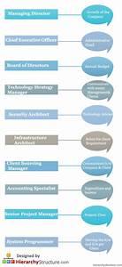 Ibm Career Designation Hierarchy Hierarchy Structure