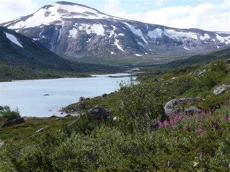 breheimen national park wikiwand