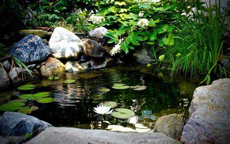 montgomery county pa pond installation aquareale pond blog