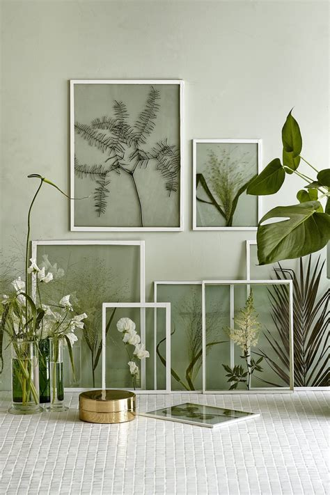 Pictures For Wall Decor by Framing Dried Plants And Flowers In Clear Glass Frames