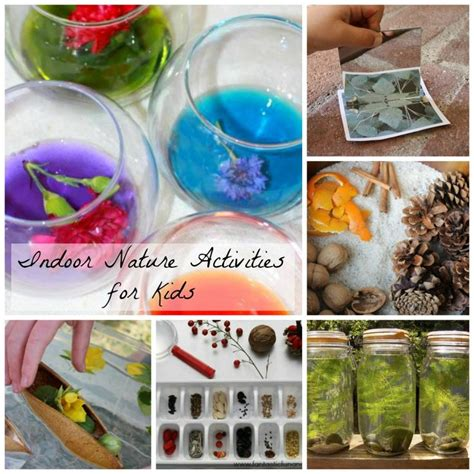 indoor nature activities for kid network 685 | 6e0bf8f1a47e98cc2cae3775af024558 nature activities activities for preschoolers