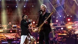 Sting (musician) - Wikipedia