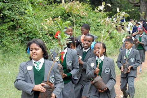 1.5 Million Trees To Be Planted In Kenya By Akdn And Lions