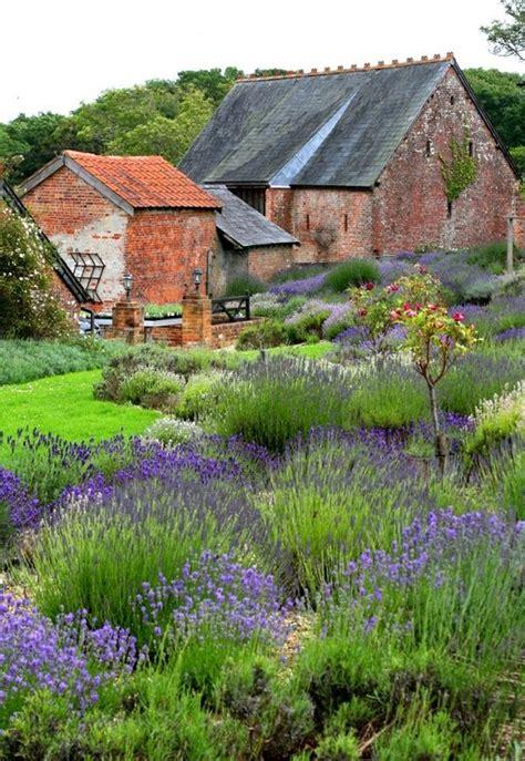 Lavender Garden  Garden Design + Photography Wildlife
