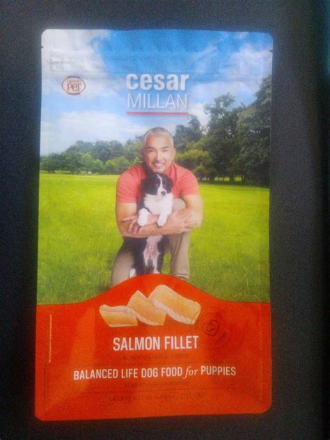 cuisines cesar cesar millan quotes and sayings quotesgram