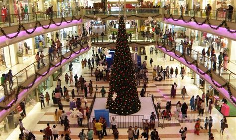 buy christmas tree india wondering where to celebrate christmas in india to 3809