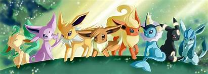 Pokemon Dragon Type Wonderful Ten