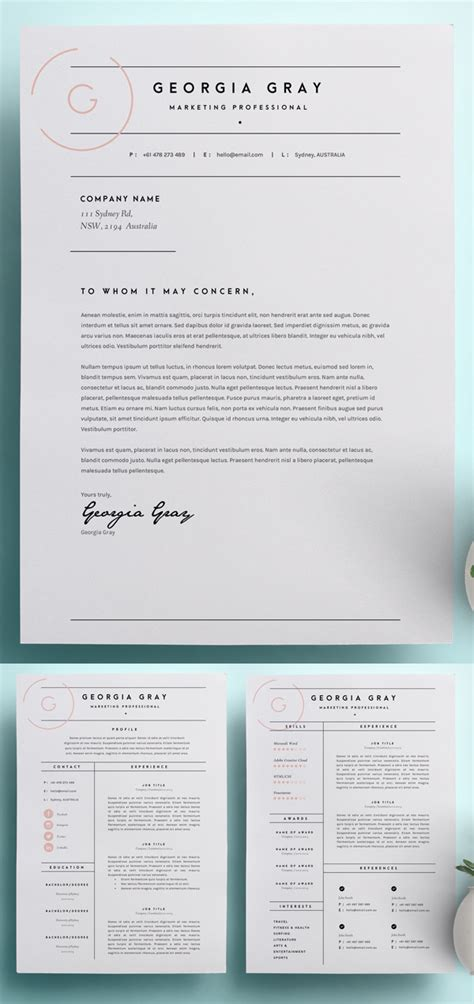 3 Page Resume Format by 18 Professional Cv Resume Templates And Cover Letter