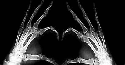 Ray 3d Desktop Hand Hands