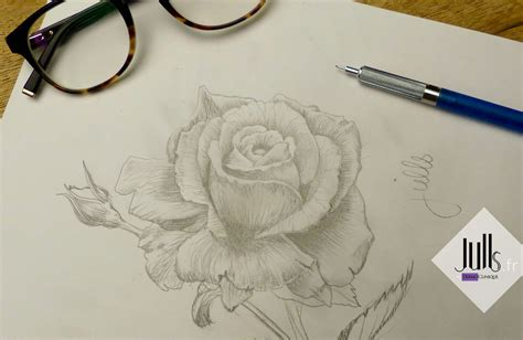 Rose En Tatouage  Galerie Tatouage