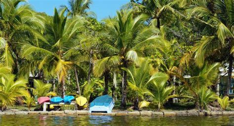 isla carenero panama guide fodors travel