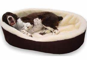 top 10 best dog beds for large dogs in 2017 reviews With best large dog bed review