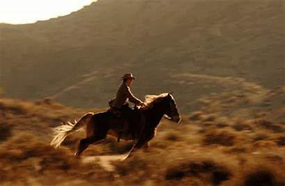 Horse Cowboy Whicdn Data Want Harlequin Re