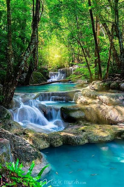 Tropical Waterfalls Waterfall Landscape Mural Forest Sunset