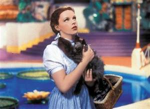Toto (The Wizard of Oz) images Toto and Dorothy wallpaper ...