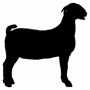 Show Goat Clipart - Clipart Suggest