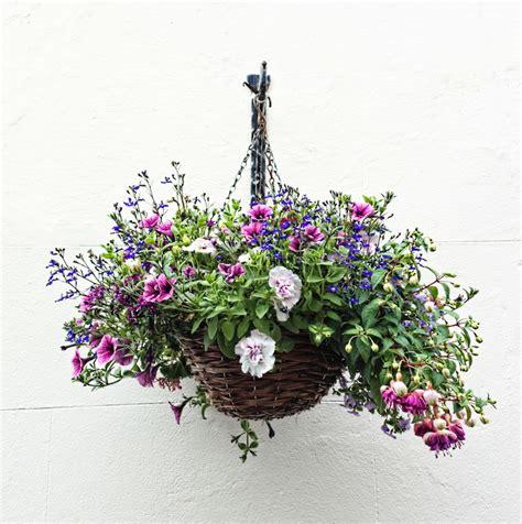 hangende planten homeandgardennl