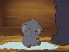Dumbo GIFs - Find   Share on GIPHY  Cute Baby Octopus Gif