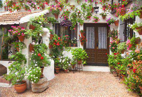 flower bulbs  mediterranean gardens  cool countries