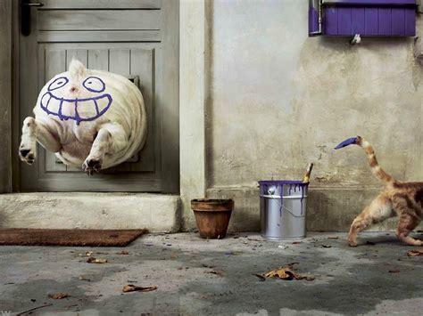 animals door dog cat paint splatter smiling smiley