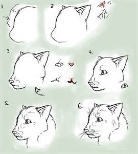 How to Draw Cartoon Cats