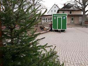 Bäckerei Engel Bad Pyrmont : wildschwein auf dem schulhof ghs herderschule bad pyrmont ~ Watch28wear.com Haus und Dekorationen