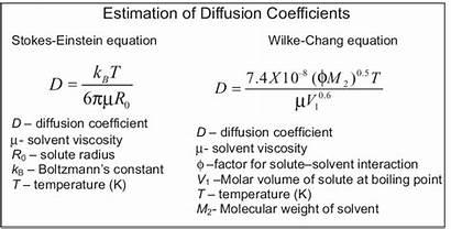 Diffusion Einstein Equation Stokes Coeffi Cients Wilke