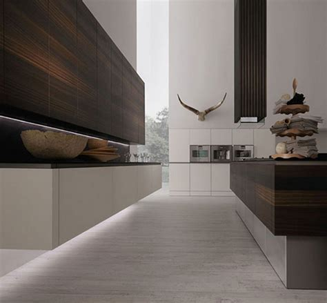 la cuisine minimaliste avec vision sophistiquée