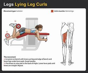 Lying Leg Curls - Complete Guide - FitnessMonster.net