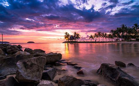 nature landscape sunset tropical beach clouds sky sea palm