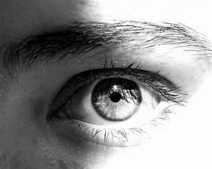 Black And White Eye Related Keywords - Black And White Eye ...