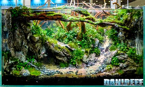 Aquascape Gallery by Cips 2017 I M Sure You Ve Never Seen Aquascaping Like