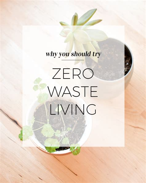A Zero Waste Life Would You Do It?  Wild & Pine