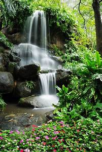 U0026quot, Waterfall, And, The, Beautiful, Flowers, In, The, Garden, U0026quot, By, Goldsaintphoto