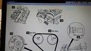Ford Focus Timing    Cam Belt Diagram